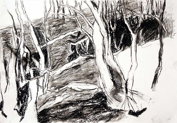 yellowbox artist residency, contemporary drawing, landscape painting, charcoal drawing, turondale, hill end, Belinda Street, Australian artist